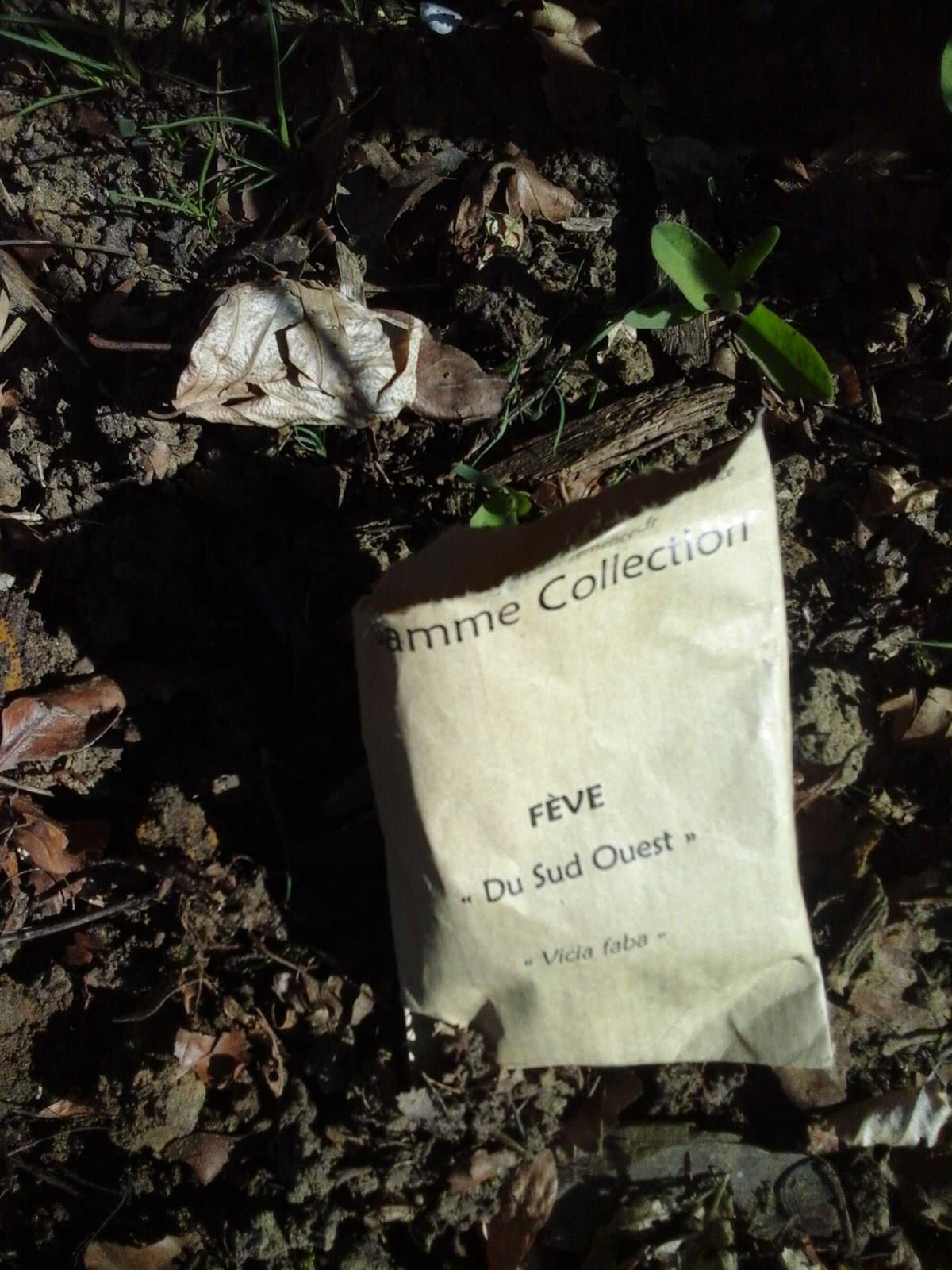 Le potager des violettes entretien des bordures du potager et semis - Planter des graines de potiron ...