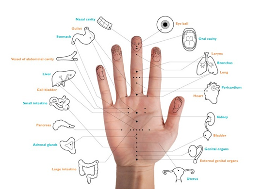 Kim's Body Solutions: Micro-Acu