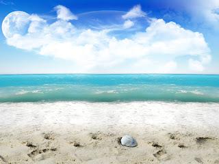 Strand met blauwe zee en schelp