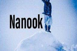 Nanook Addon - How To Install Nanook Kodi Addon Repo