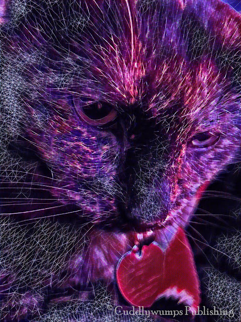 Real Cat Paisley_Futuristic #CaturdayArt #Lunapic