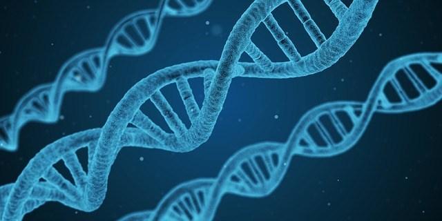 हम आनुवंशिक परीक्षण के मनोविज्ञान के बारे में क्या जानते हैं?