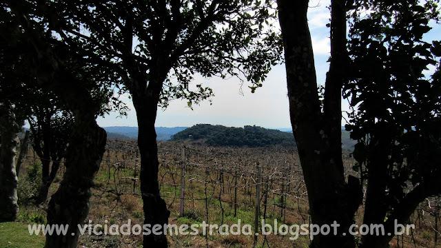 Bento Gonçalves, RS, região da uva e do vinho