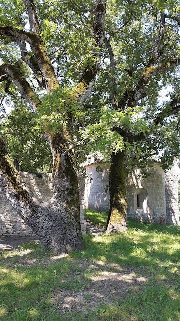 quatrinaime - chapelle notre dame du revest