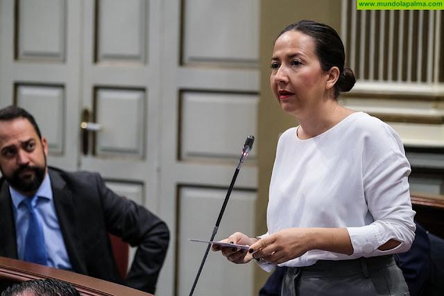 Hernández Labrador pide mayor compromiso del Gobierno de Canarias en materia de Educación