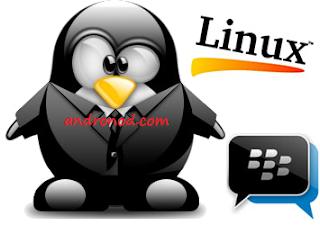 BBM Mod Tema Linux v2.13.1.14 Apk Clone | Unclone Terbaru