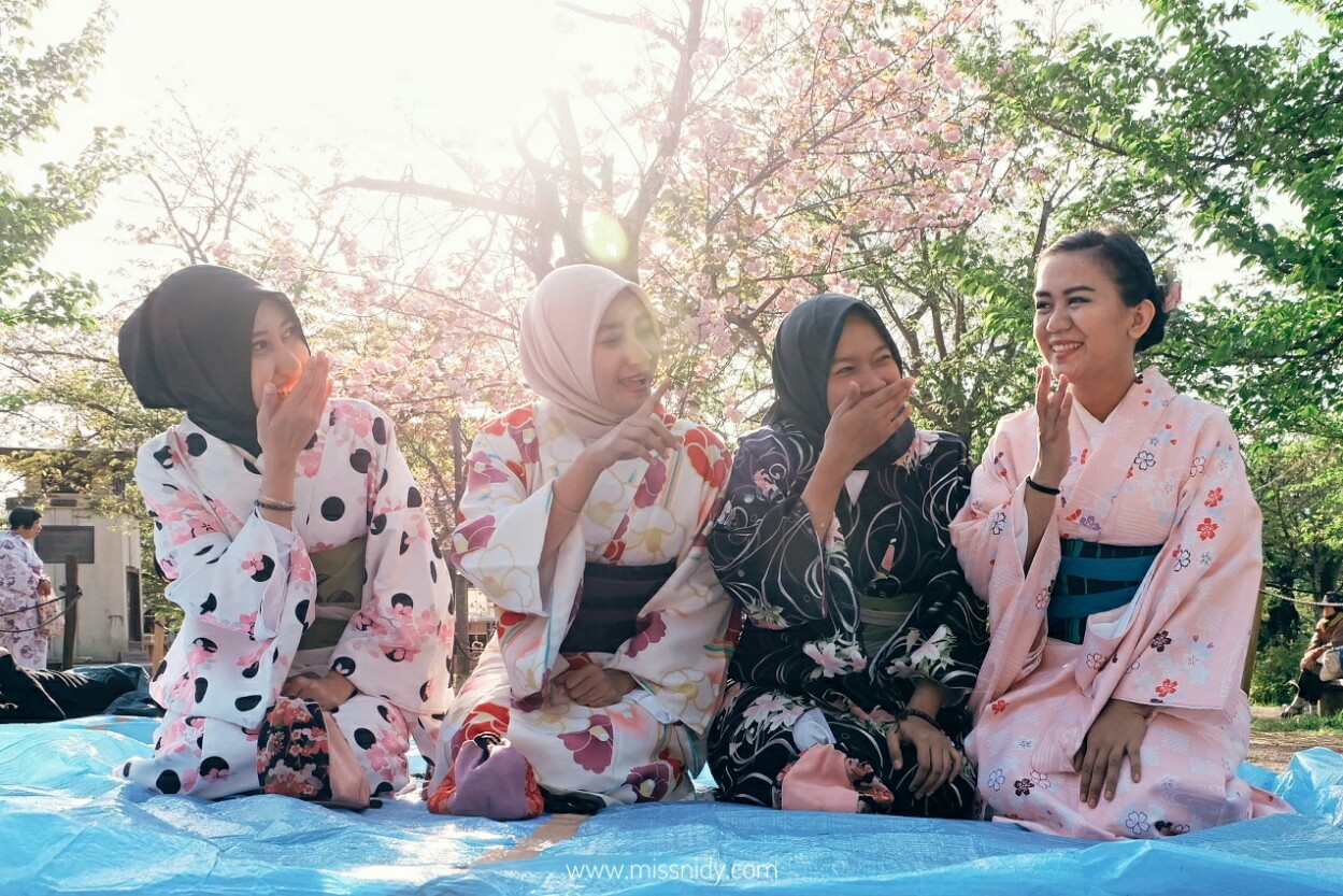 hanami spot in kyoto