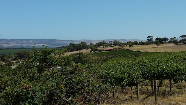 Landscape picture of McLaren Vale, fields of grapevines in the foreground, a homestead building in the middle with the Mt Lofty Ranges and Fleurieu peninsula in the background.