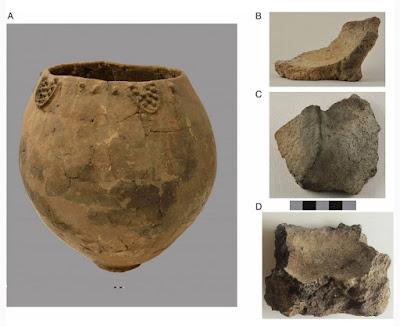 Un nuevo descubrimiento indica que el vino data de más de 8000 años