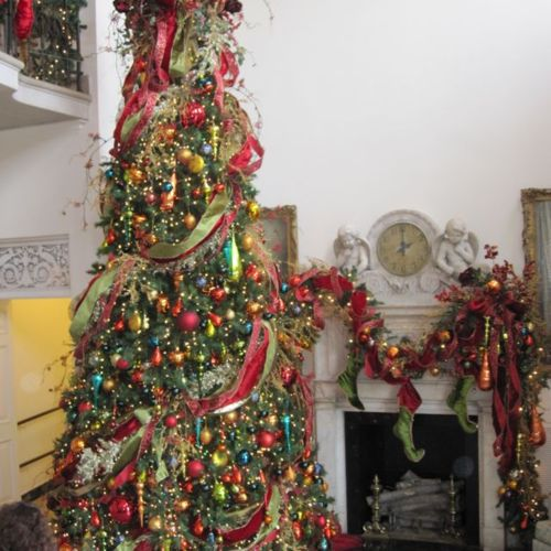 Anyone Can Decorate: Beautifully Decorated Christmas Trees