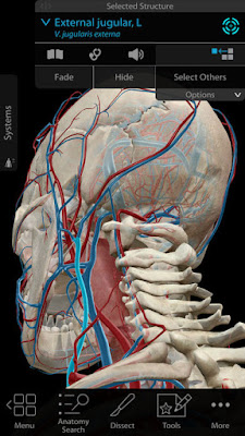 Download Human Anatomy Atlas 2018 IPA For iOS Free For iPhone And iPad With A Direct Link.