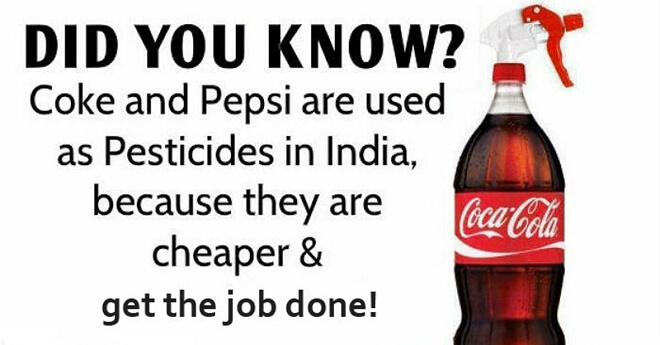 Farmers In India Use Coca-Cola And Pepsi As A Cheaper Alternative To Pesticides