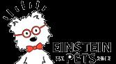 Einstein Pets makes dog treats using chia seeds.