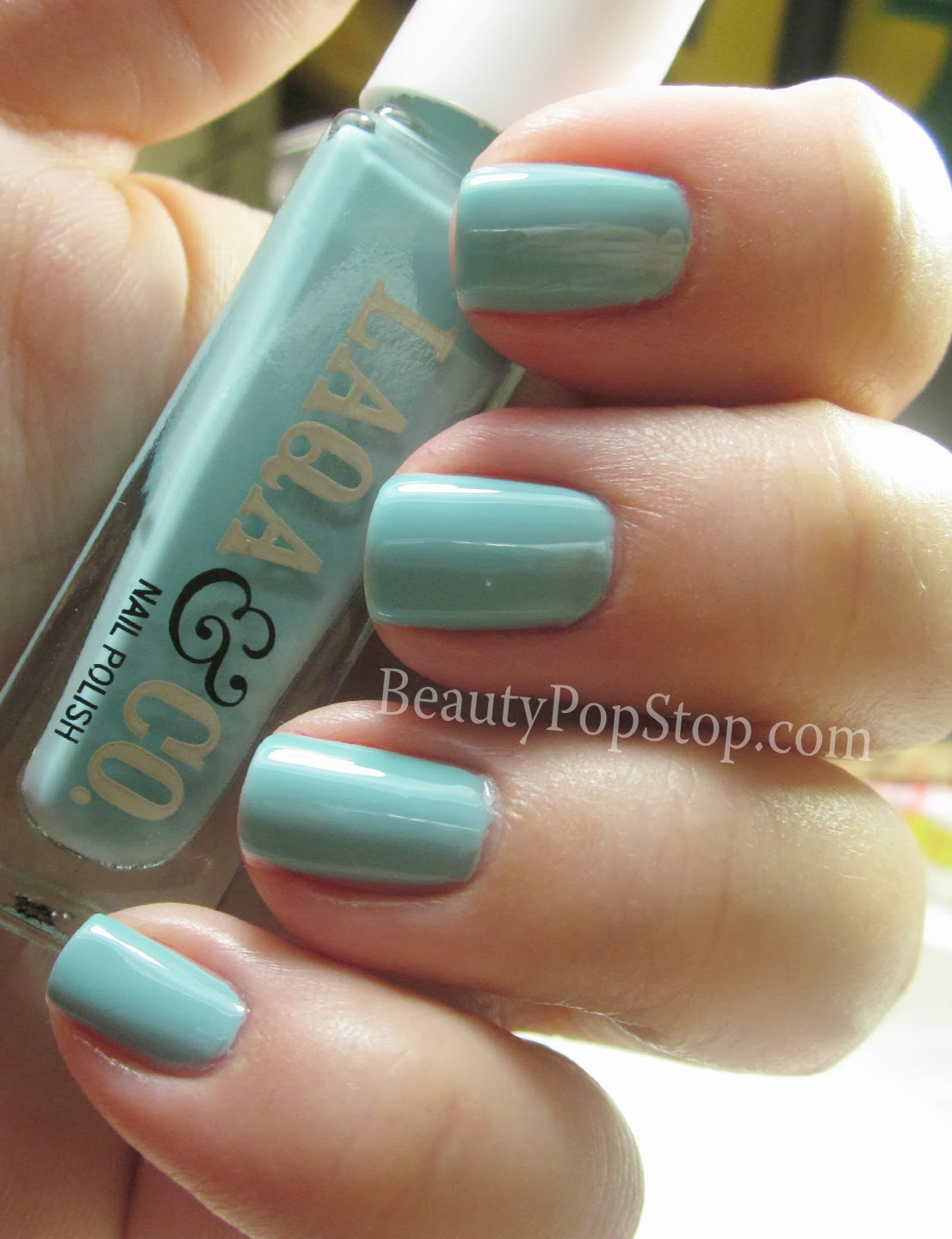 BeautyPopStop: LAQA & Co Nail Polish Pens, Nail Polish and Fat Lip ...