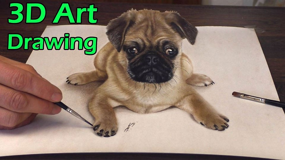 13-Little-Dog-Pug-Stefan-Pabst-NO-Photoshop-3D-Anamorphic-Drawings-with-Video-www-designstack-co