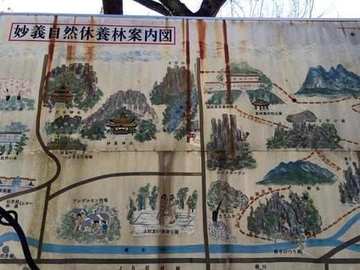 妙義自然休養林案内図