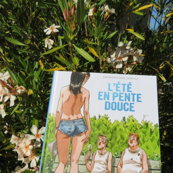 L'été en pente douce (BD) de Pierre Pelot et Chauzy