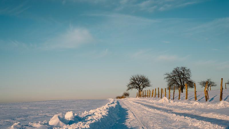 The Calm Winter Nature