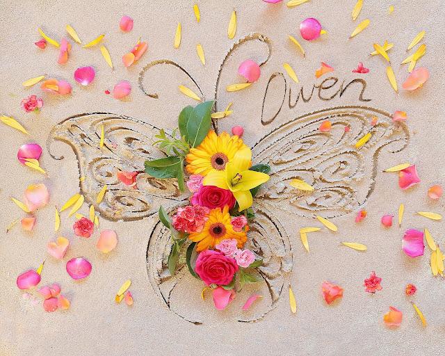 https://theseashoreofremembrance.blogspot.com/2018/09/leilani-flower-butterflies.html