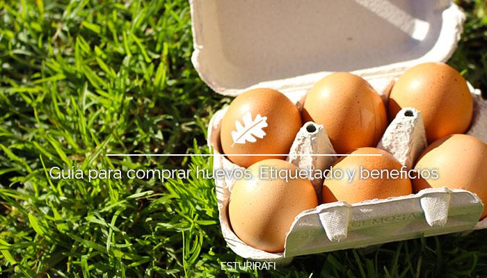 Guía para comprar huevos. Etiquetado y beneficios