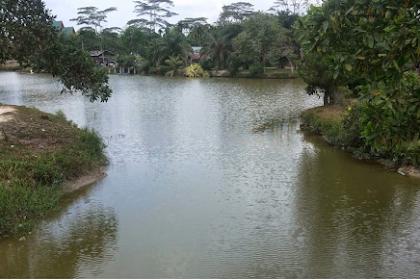 Danau Kualo Mudo - Wisata Duri Bengkalis