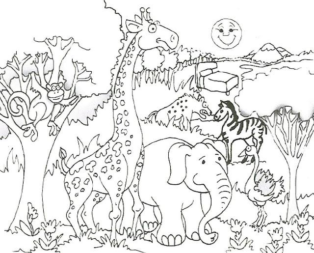 tranh tô màu động vật cho bé tập tô màu 14