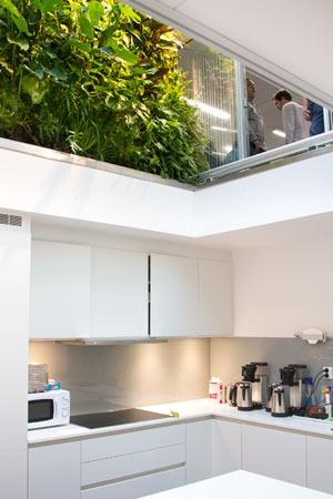 vertical garden inside an office