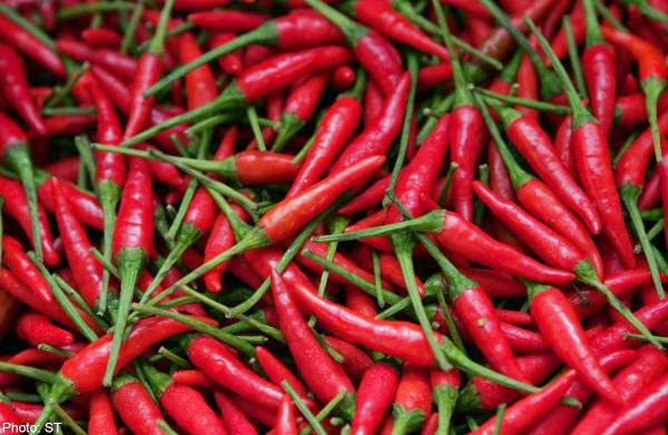 Spicy food lovers more vulnerable to stress