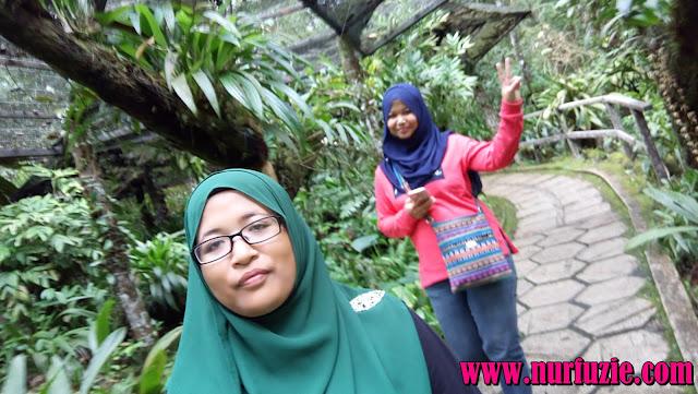 terus ke tempat view Kota Kinabalu sebelum keluar daripada Kinabalu ...
