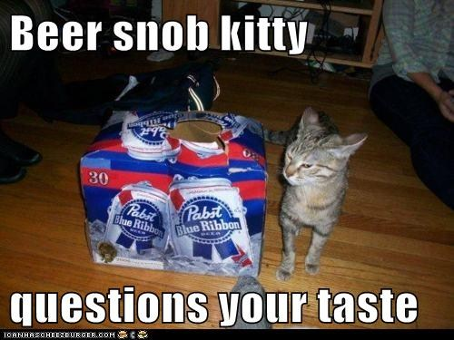 Beer Snob Kitty