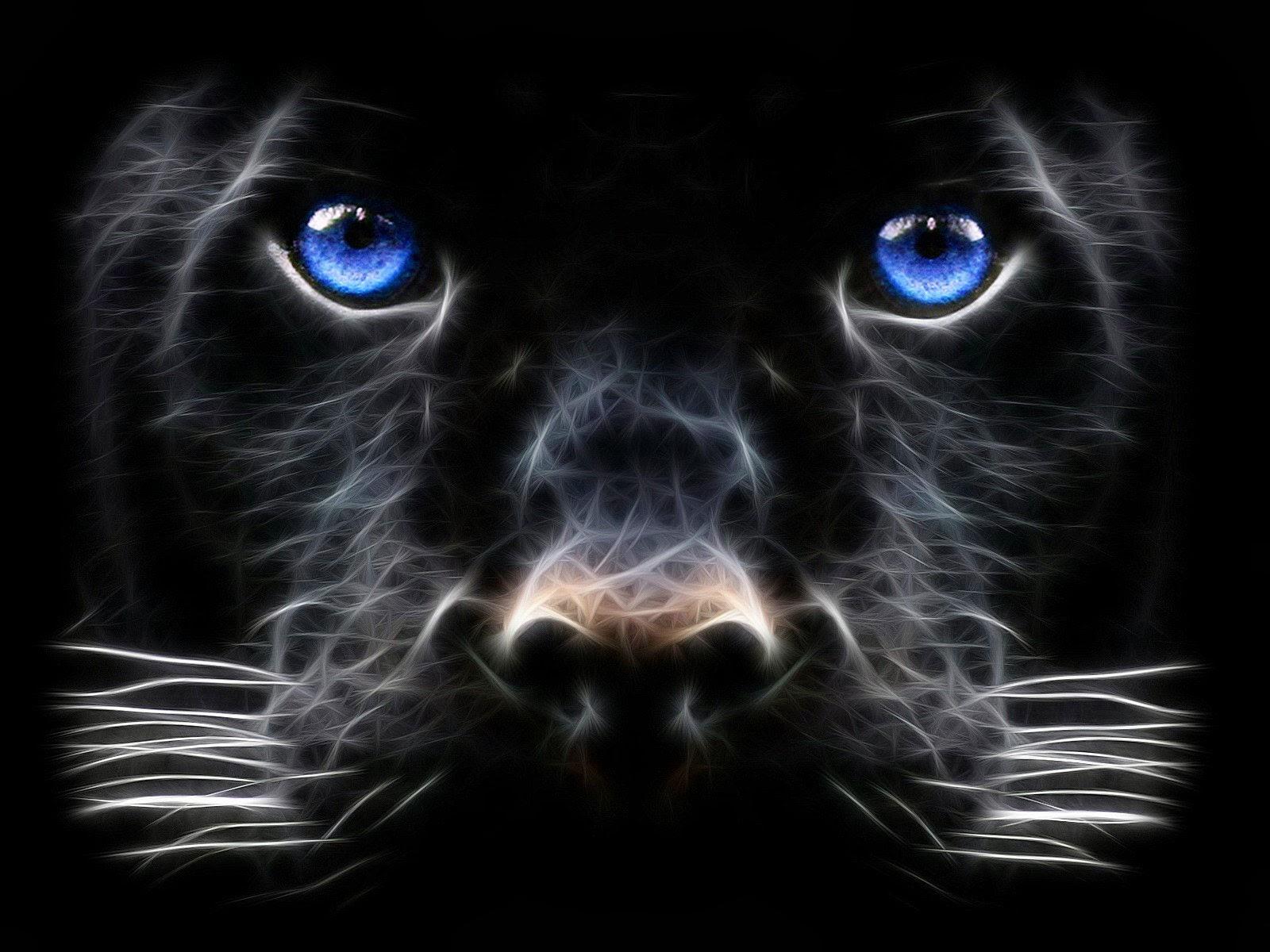 Fotos De Animales Salvajes Para Fondo De Pantalla: Imagenes Hilandy: Fondo De Pantalla Animales Leopardo