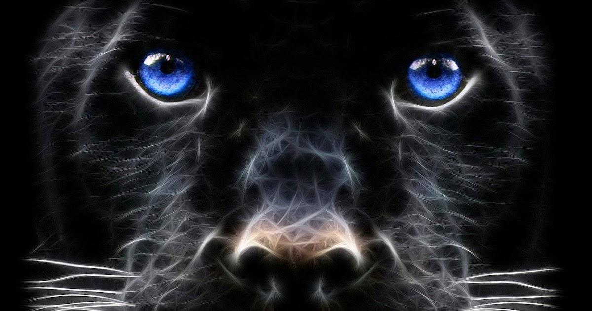 Fondo De Pantalla De Leopardo Fondos De Pantalla Gratis: Fondo De Pantalla Animales Leopardo Negro Con Los Ojos