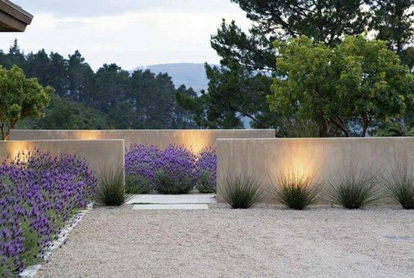 Casas Minimalistas y Modernas Jardines Minimalistas de Concreto