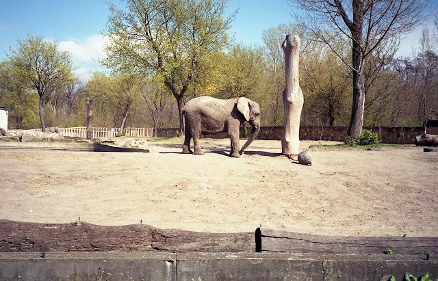 Warszawski Ogród Zoologiczny
