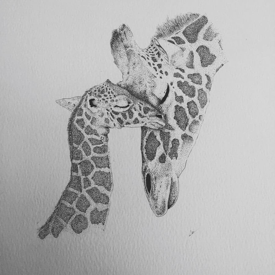 06-Mother-and-Baby-Giraffe-Paige-Bates-www-designstack-co