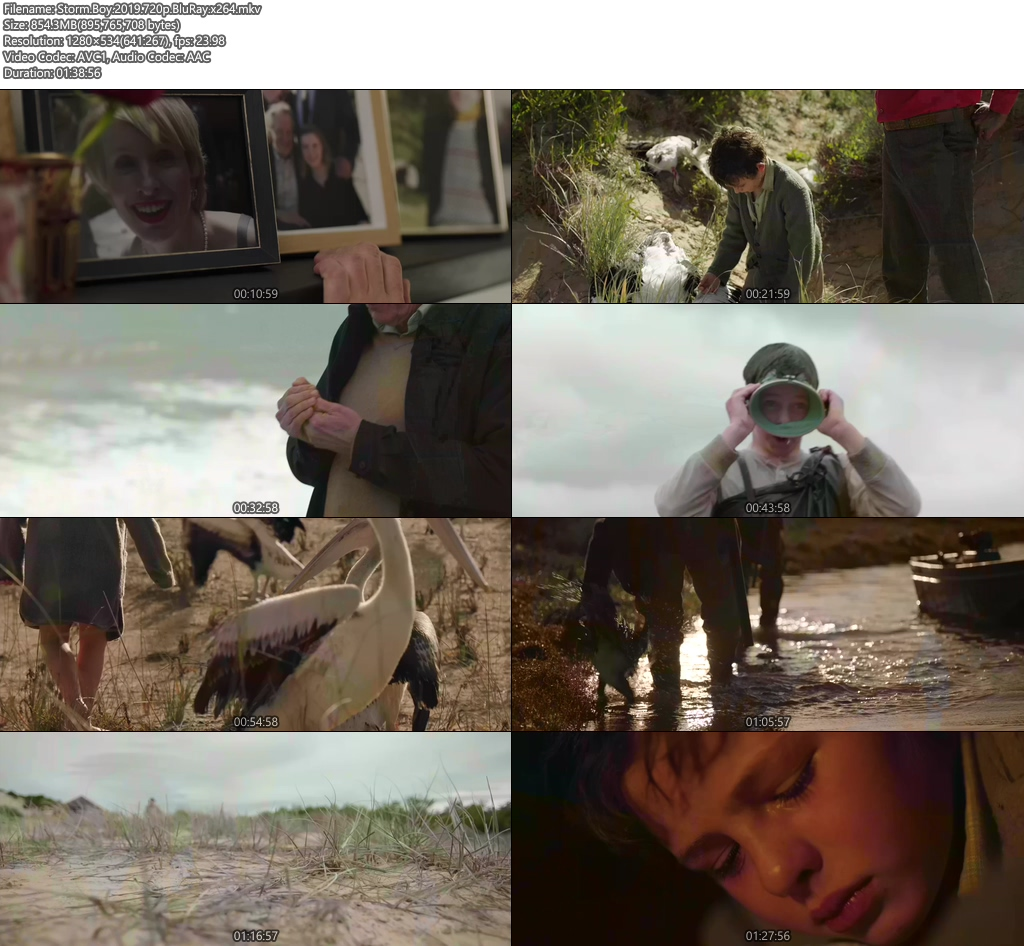 Storm Boy 2019 720p BluRay x264 | 480p 300MB | 100MB HEVC Screenshot