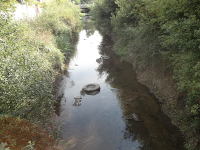 Resultado de imagem para rio lambo