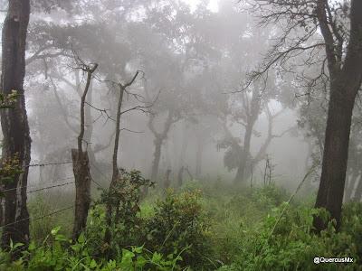 Amanecer en el Cerro García en un día de Septiembre de 2014