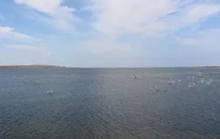 Água da transposição do Rio São Francisco chega à Paraíba, diz MPF