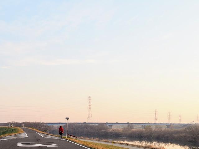 江戸川 左岸河口から36km