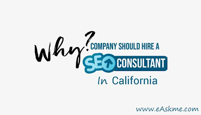 Why Your Company Should Hire a Brilliant SEO Consultant in California: eAskme