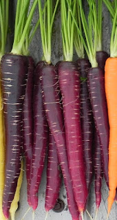 vivix shaklee, vivix diabetes, masalah stroke, vivix utk stroke, kandungan vivix, muscadine grapes, elderbery, polygonum cuspidatum, purple carrot, khasiat vivix, kelebihan vivix, anti kanser, keistimewaan vivix, awet muda, vivix awet muda