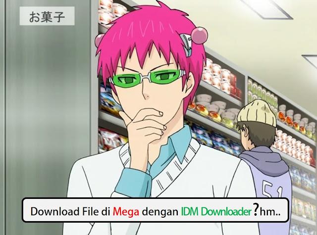 Cara Download File MEGA menggunakan IDM, Gampang!