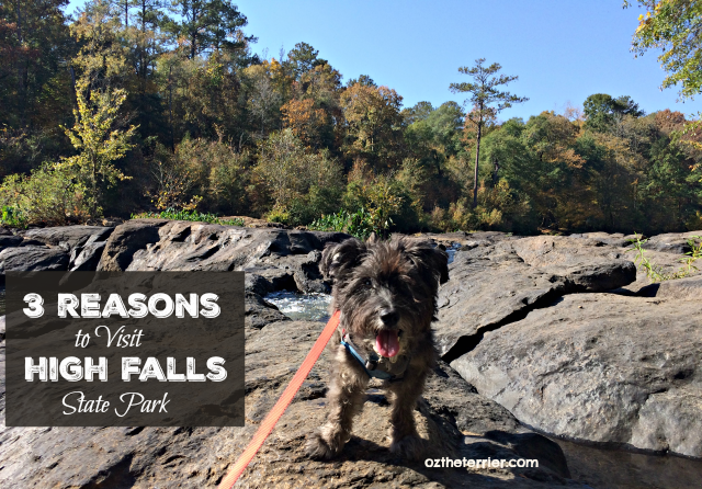 3 reasons to visit high falls state park in jackson, georgia