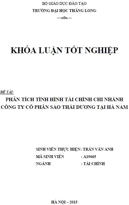 Phân tích tình hình tài chính Chi nhánh Công ty cổ phần Sao Thái Dương tại Hà Nam