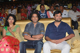 Nenu Local Audio Launch Stills  0215.JPG