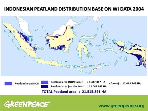 Peta Sebaran Rawa di Indonesia
