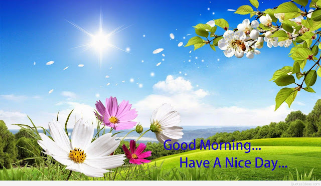 good morning,good morning quotes,quotes,good morning life quotes,morning quotes,good morning wishes,good morning video,good morning whatsapp video,life quotes,good morning sms,inspirational good morning quotes,motivational quotes,good morning wishes with beautiful quotes,good morning my love,good morning images,good morning message,good morning wishes quotes,morning life quotes,good morning positive quotes