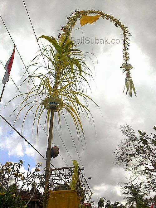 Penjor creations
