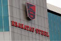 PT Krakatau Steel (Persero) Tbk - Recruitment For Professional Staff Krakatau Steel Group April 2016